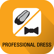 Professional Dress
