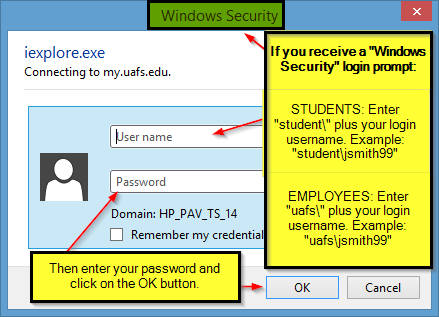 example of Windows Security login